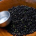 All About Acai – The Berry That Beats All Berries