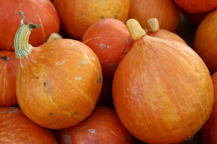 5 Reasons Your Body Will Love Pumpkins