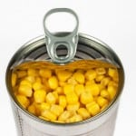 Fertility, Disease, Food and BPA