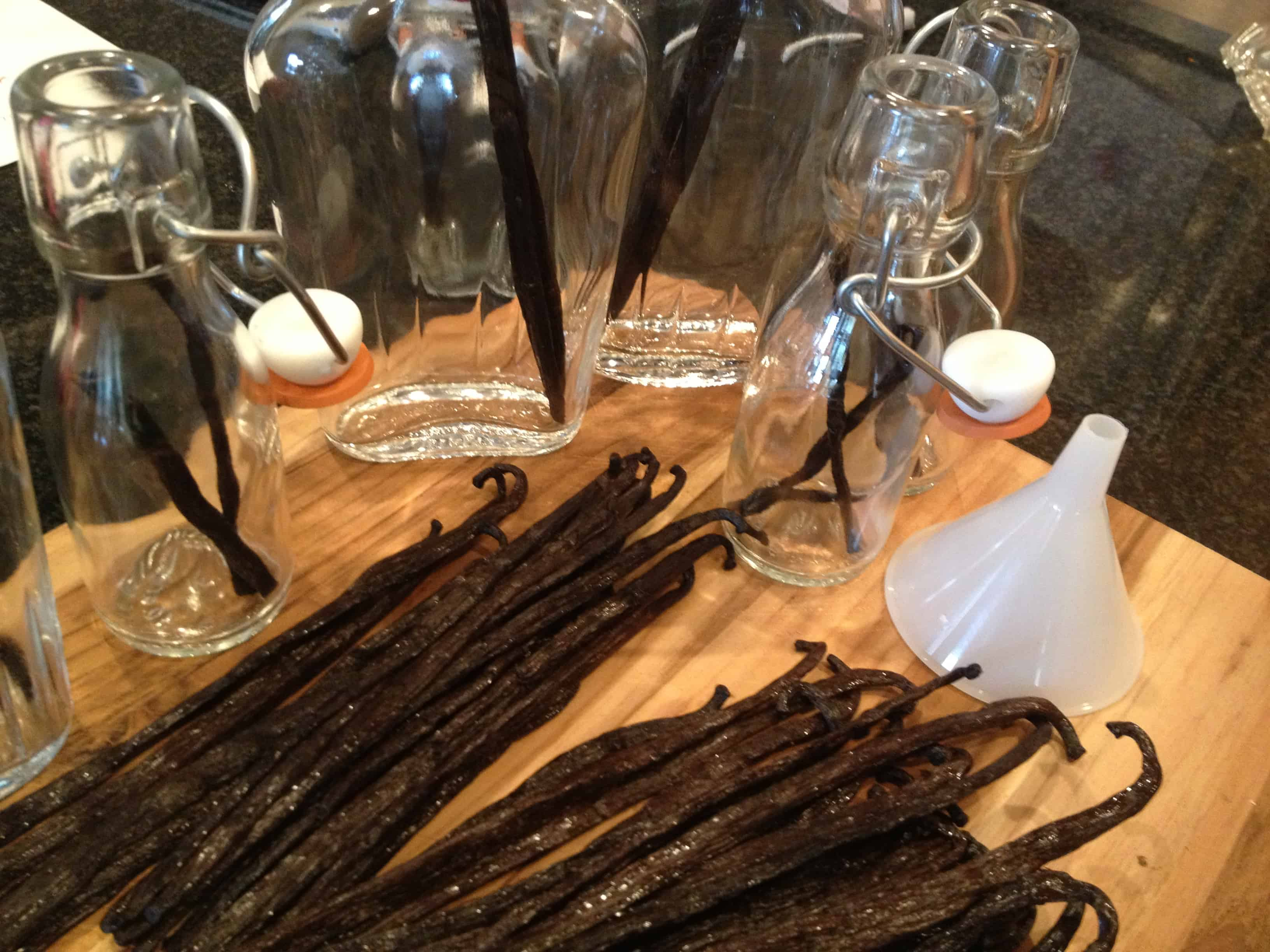 Vanilla Beans and Bottles