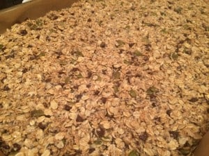 granola bars - raw